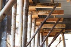 Eucalyptus prop. Bracing eucalyptus under beams  and concrete slabs Royalty Free Stock Photos