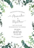 Eucalyptus selection natural card. Herbal invitation simple vector vertical  frame. Hand painted plants, branches, leaves on white background. Wedding design Stock Images