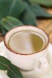 Eucalyptus Tea Royalty Free Stock Photo