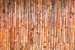Eucalyptus wood wall Royalty Free Stock Photo