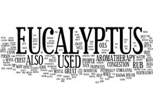 Eucalyptus Word Cloud Concept Royalty Free Stock Image