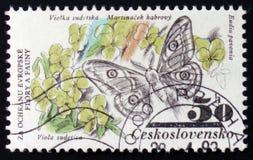 Eudia-Pavonia und Viola sudetica, von der Reihe ` Flora und vom Fauna `, circa 1983 Stockbild