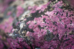Eudialyte. Nord minerals of cola peninsula Stock Image