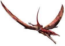 Eudimorphodon Royaltyfri Bild