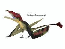 Eudimorphodon Resting with Font Stock Image