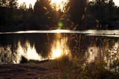 Eugene, Όρεγκον Στοκ εικόνες με δικαίωμα ελεύθερης χρήσης