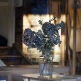 Eukaliptus w szklanej wazie w interiour Zdjęcia Royalty Free