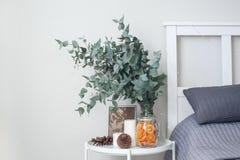 Eukaliptus w wnętrzu w sypialni łóżkiem, zdjęcia stock