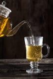 Eukalyptus-Tee-Tee auf einer Metallbeschaffenheit Stockfotografie