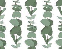 Eukalyptusbabyblau, natürliche Niederlassungen des Laubs mit Grün verlässt Samen tropisches nahtloses Muster Stockfotografie