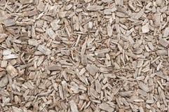 Eukalyptuschip Stockfoto