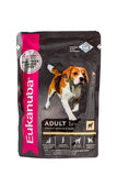 Eukanuba chicken ragout, pouches of dog food. Stock Image