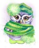 Eule in einer grünen Kappe und in einem Schal Lizenzfreies Stockbild