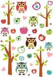 Eulen, Äpfel und Bäume Lizenzfreies Stockbild
