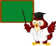 Eulenlehrerkarikatur mit Brett Lizenzfreie Stockfotos