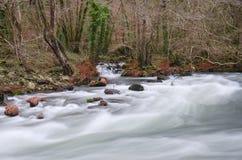 Eume river Stock Photos