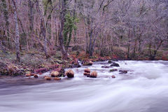 Eume river Royalty Free Stock Photos