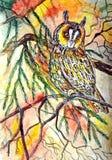 Eurasian Eagle Owl Aquarela molhada de pintura no papel Arte ingénua Aguarela no papel ilustração stock