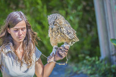 Eurasian eagle owl, bubo bubo. The picture is shot in Zoo Lagos, Portugal stock photo