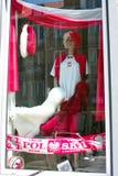 euro 2012 koloru Obraz Royalty Free