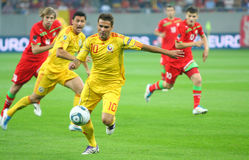 Euro 2012 Qualifying Round Romania-Belarus Stock Photos