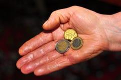 Euro immagine stock libera da diritti