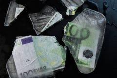 euro 100 Fotografering för Bildbyråer