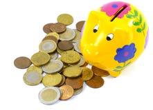 Euro ahorrado en una caja de dinero amarilla con las flores Imagen de archivo libre de regalías