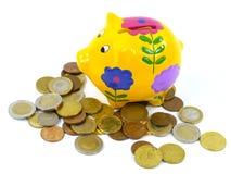 Euro ahorrado en una caja de dinero amarilla con las flores Imágenes de archivo libres de regalías