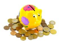 Euro ahorrado en una caja de dinero amarilla con las flores Fotos de archivo libres de regalías