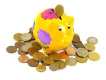 Euro ahorrado en una caja de dinero amarilla con las flores Imagenes de archivo