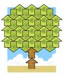 Euro albero dei soldi Immagine Stock