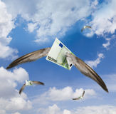 Euro ausente que vuela foto de archivo