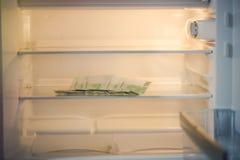 Euro bankbiljetten in een lege ijskast: een handvol van 100 eurobankbiljetten in een lege ijskast De vrouwelijke hand neemt geld  Stock Foto