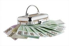 Euro bankbiljetten en doos Royalty-vrije Stock Afbeeldingen