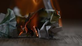 Euro banknote burning stock video footage