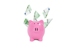 Euro Banknotes Around Piggy Bank Royalty Free Stock Photography