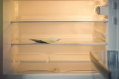Euro banknotes in an empty refrigerator:a handful of 100 euros banknotes in an empty refrigerator. Female hand take money from fri Royalty Free Stock Photography