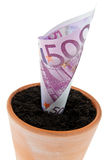 Euro-bill in flower pot. Interest rates, growth. Stock Image