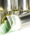 Euro bills on a tin can. Over white background Royalty Free Stock Photos