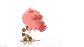 Euro caduta del ` s dal porcellino salvadanaio Immagini Stock