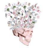 Euro che volano dal cranio Immagini Stock