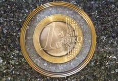 Euro coat of arms Stock Photos