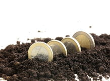 Euro coins grow from the ground Royalty Free Stock Images