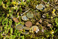 Euro coins. Mixed Euro coins on the ground royalty free stock photo