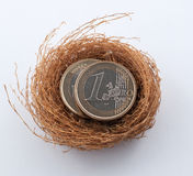 Euro coins in nest Royalty Free Stock Photography
