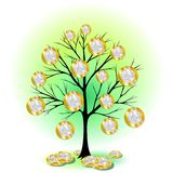 Euro Currency Tree Stock Image