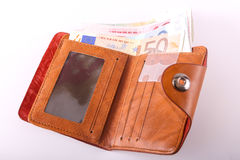 Euro del portafoglio di viaggio - Francia Immagine Stock