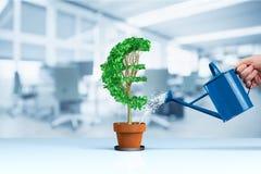 Euro dochodu przyrosta pojęcie zdjęcie stock