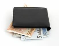 Euro e carteira Foto de Stock